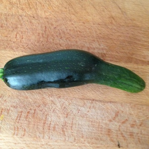 One of only two courgettes.